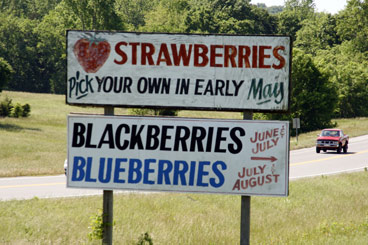 Strawberry-Sign