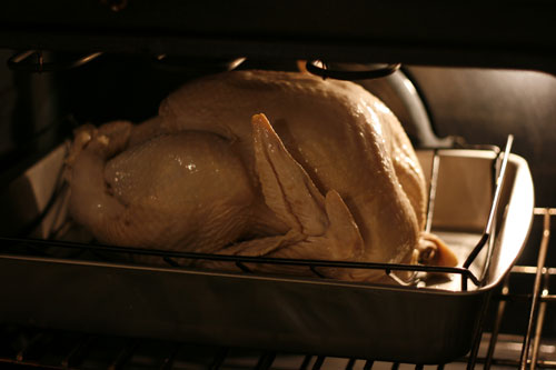 Turkey-in-Oven